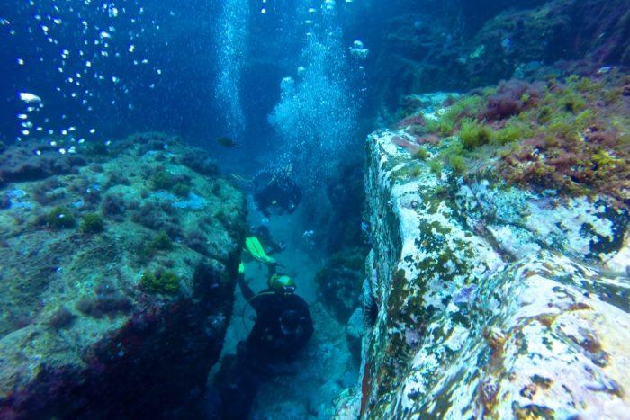 7 Mares buceo canarias