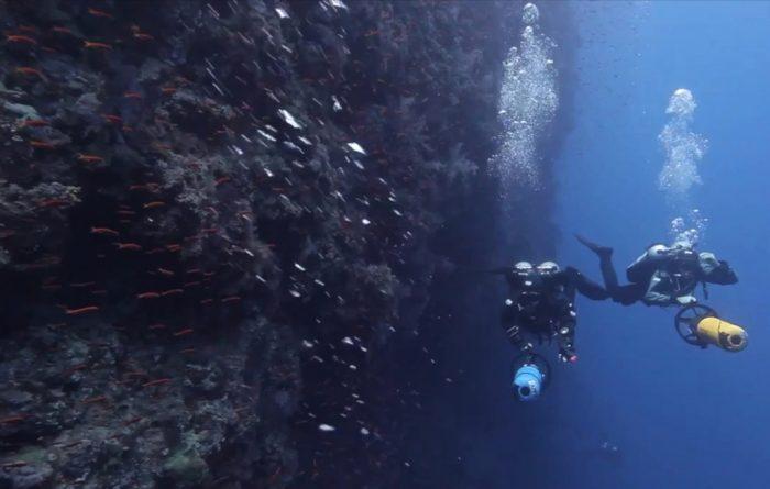7 Mares especialidad de buceo PADI