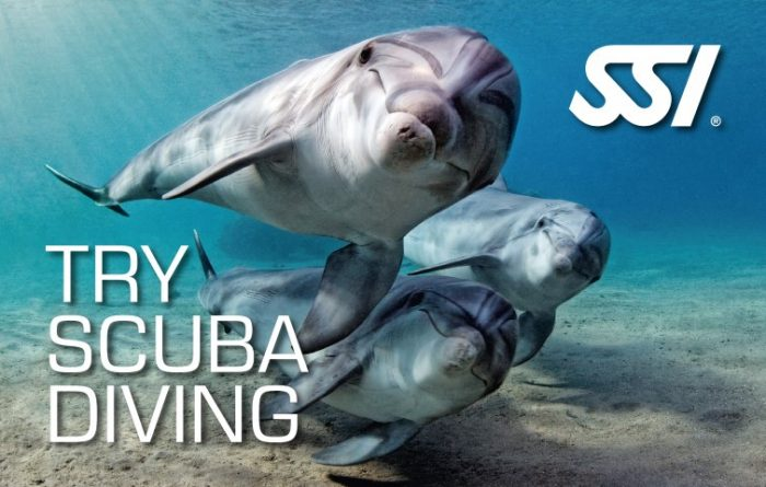 Atlantis Diving Lanzarote Try-Scuba-Diving-Small