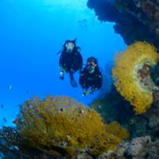 Atlantis Diving-Lanzarote inmersion de buceo