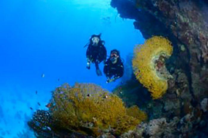 Atlantis Diving-Lanzarote inmersion de buceo