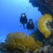 Atlantis Diving Lanzarote inmersion de buceo
