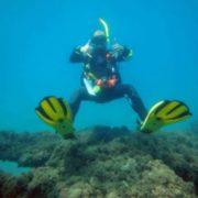 Buceo Estepona buceador durante inmersion