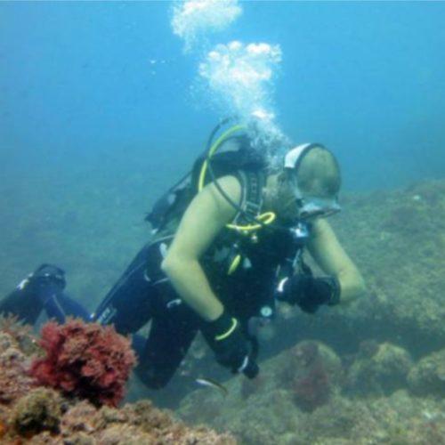 Buceo Estepona inmersiones Malaga y Marbella