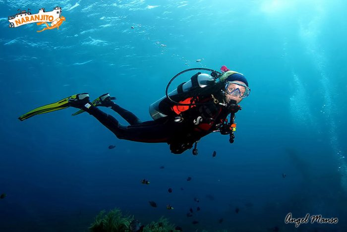 Buceo Naranjito inmersion Cabo de Palos