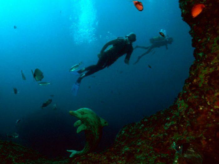Cova del Dofi Medes Dive Paradis