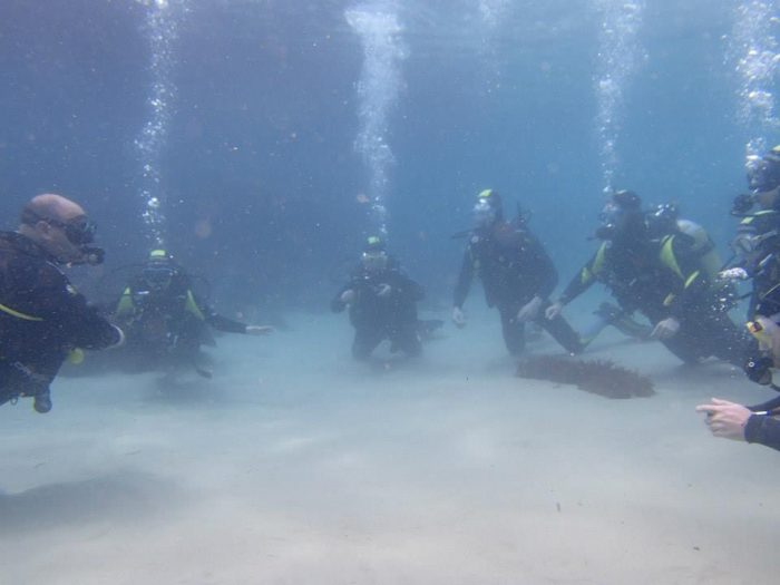 Curso Open Water Cadiz Dive Center Barbate