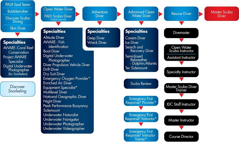 Diagrama de cursos de buceo y submarinismo PADI