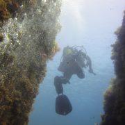 Inmersión-entre-paredes-Buceo-Aguadulce