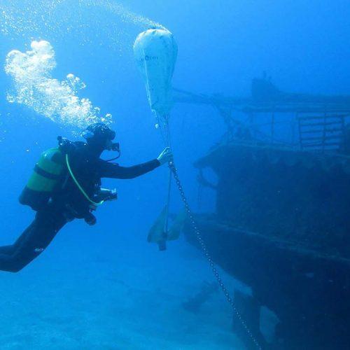 Inmersion Meridian Ocean Dreams Tenerife
