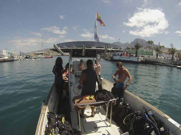 Inmersion desde embarcacion Ocean Dreams Tenerife