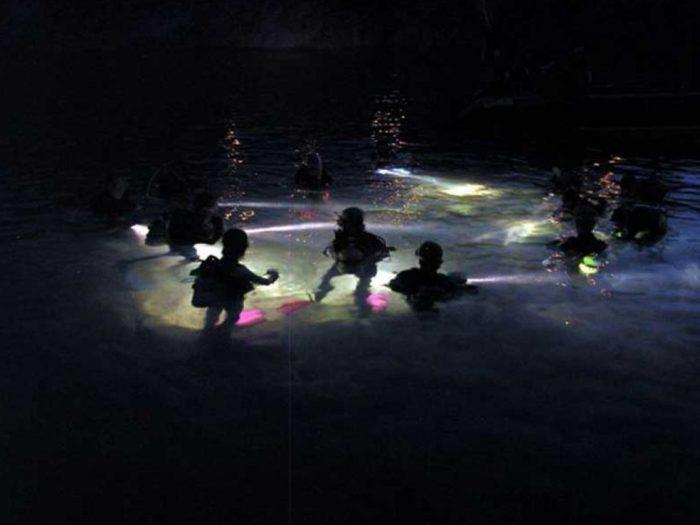 Inmersion nocturna buceo Mero Diving Mallorca