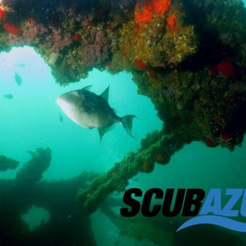 Inmersiones de buceo de aventura Scubazul Torremolinos