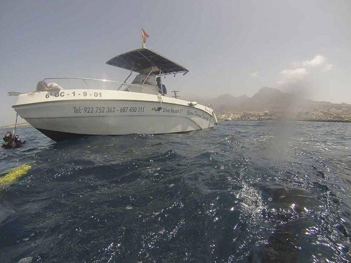 Inmersiones en barco Canarias Ocean Dreams Tenerife
