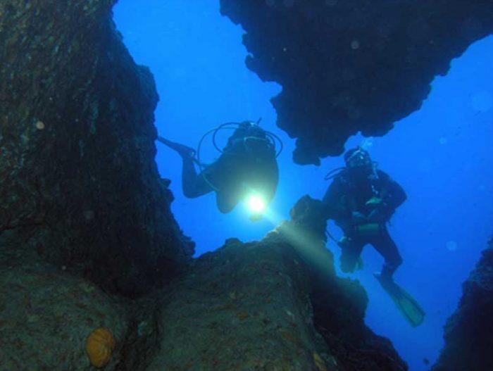 Mero Diving buceo Mallorca
