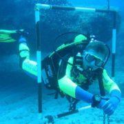 Mero Diving ejercicios curso buceo Mallorca