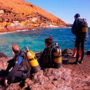 Ocean Dreams Tenerife inmersiones de buceo
