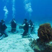 entrenamiento-padi-scuba-diving