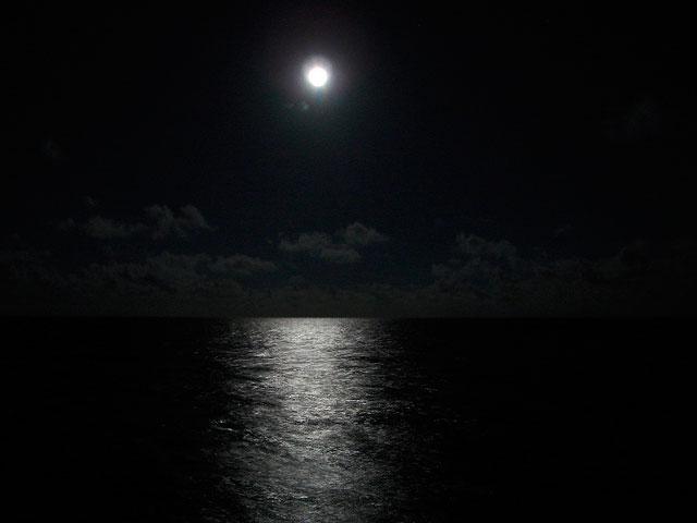 inmersiones-nocturnas-especialidades-PADI