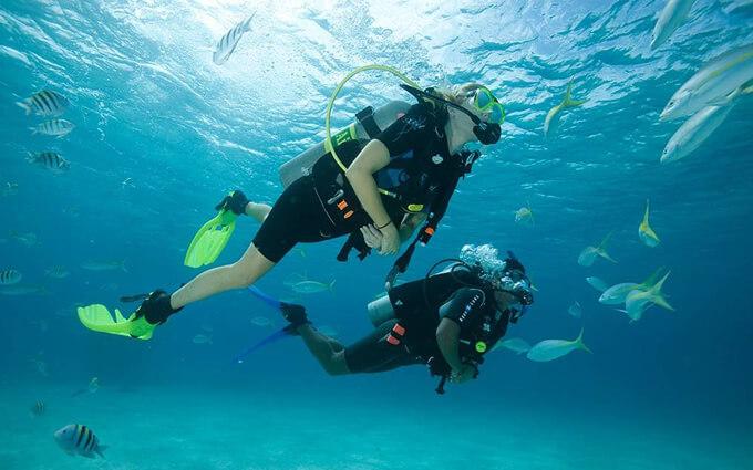 Cursos de buceo PADI en Tenerife